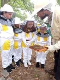 Czech Republic – Salesian honey in České Budějovice