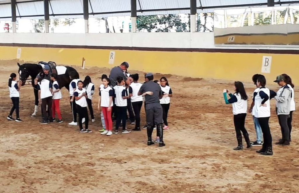 Brazil - Children of Don Bosco Institute follow Hippotherapy Project