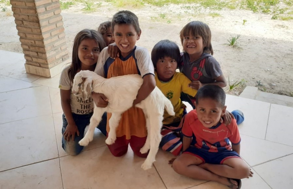 Paraguay – Sheep Projects and Sustainable Vegetable Gardens of Social Ministry in Chaco Paraguayo