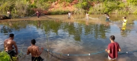 Brazil – A fish farming project brings development to Indigenous Mission with Bororo