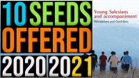 """RMG – Ten seeds to deepen """"Young Salesians and accompaniment. Orientations and directives"""""""