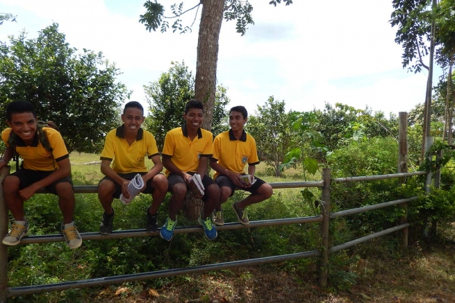 Australia - An appeal for needs of East Timor's Salesian houses