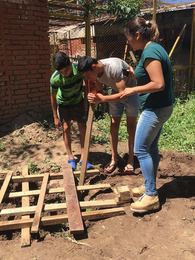 "Argentina – Home vegetable gardens: to continue taking care of the ""common home"""