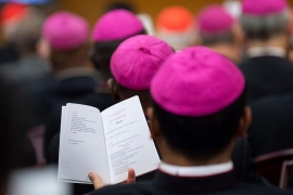 The numbers of the Synod